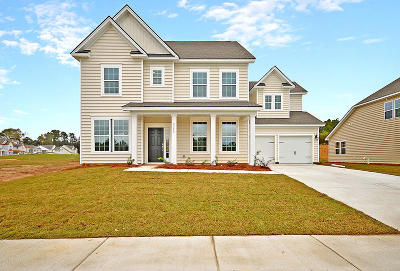 Summerville Single Family Home For Sale: 1111 Sapling Drive