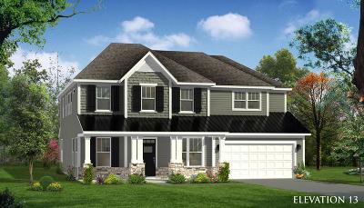 Summerville Single Family Home Contingent: 461 Spectrum Road