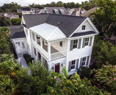 Berkeley County, Charleston County Single Family Home For Sale: 506 Indian Corn Street