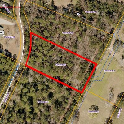 Awendaw Residential Lots & Land For Sale: 02 Raw Dew Drive