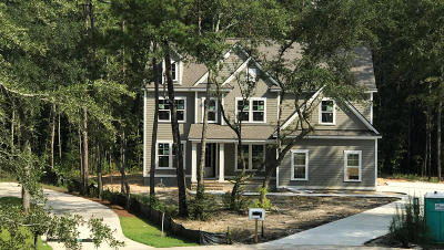Summerville Single Family Home For Sale: 4031 Cascades Thrust