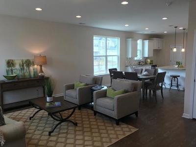 Charleston County Single Family Home For Sale: 1672 Emmets Road