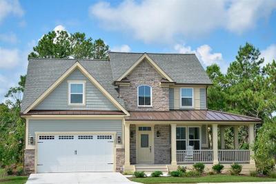 Summerville Single Family Home For Sale: 205 Lynx Lane
