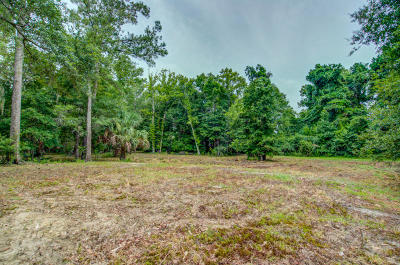 Residential Lots & Land For Sale: 2044 Shell Island Ace Trail