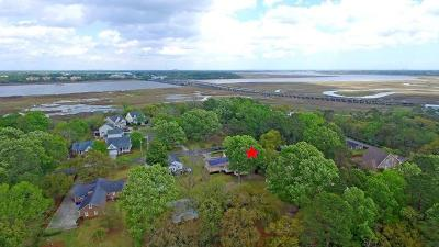 Charleston Single Family Home For Sale: 2147 Pierpont Avenue