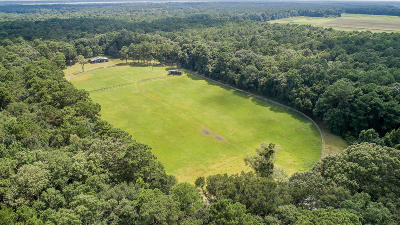 Johns Island Residential Lots & Land Contingent: 4379 River Road