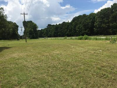 Awendaw Residential Lots & Land For Sale: 4911 N Hwy 17