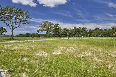 Berkeley County, Charleston County Residential Lots & Land For Sale: 301 Apprentice Street