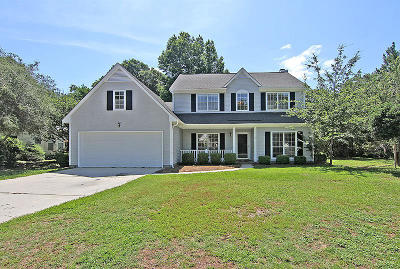 Mount Pleasant Single Family Home For Sale: 1312 Country Lane