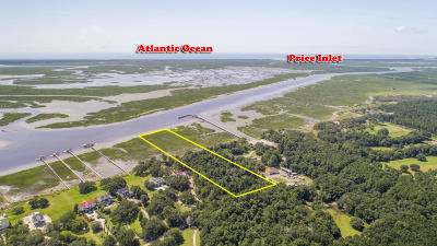 Awendaw Residential Lots & Land For Sale: Mossey Grove Lane
