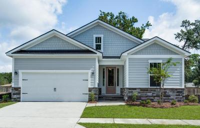 Mount Pleasant Single Family Home For Sale: 1258 Gannett Road