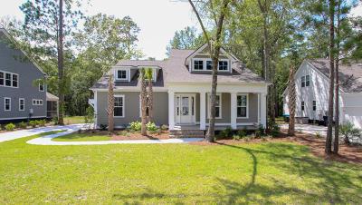 Summerville Single Family Home For Sale: 4022 Cascades Thrust