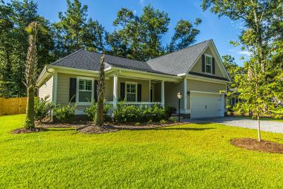 Johns Island Single Family Home For Sale: 3121 Olivia Marie Lane