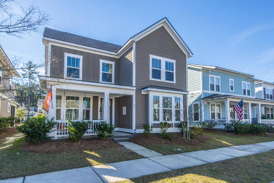Summerville Single Family Home For Sale: 229 Ribbon Road
