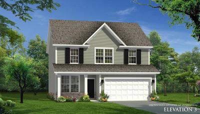 Moncks Corner Single Family Home For Sale: 103 Sugeree Drive