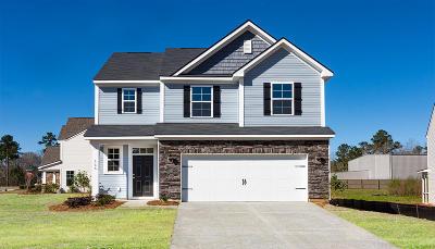 Moncks Corner Single Family Home For Sale: 155 Sugeree Drive