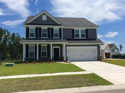 Single Family Home For Sale: 247 Basket Grass Lane