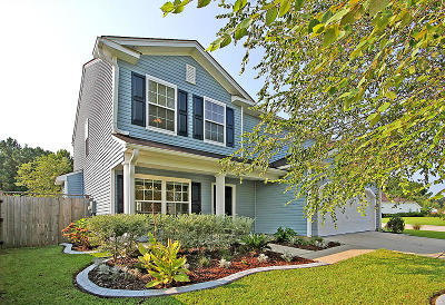 Summerville Single Family Home For Sale: 489 Dolphin Dr