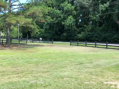 Mount Pleasant SC Residential Lots & Land For Sale: $179,900