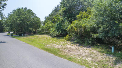 Charleston County Residential Lots & Land For Sale: 29 Seagrass Lane
