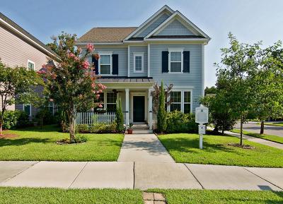 Summerville SC Single Family Home For Sale: $287,000