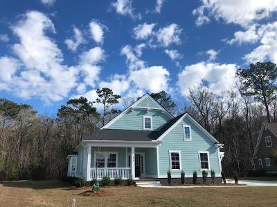 Summerville SC Single Family Home For Sale: $469,000