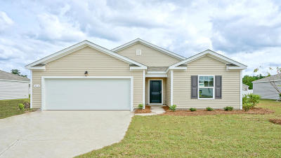Ladson Single Family Home For Sale: 3735 Flooded Field Drive