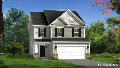 Summerville Single Family Home For Sale: 142 Elliott Creek Lane