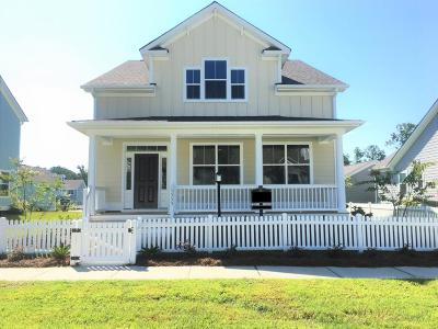 Mount Pleasant SC Single Family Home For Sale: $469,990