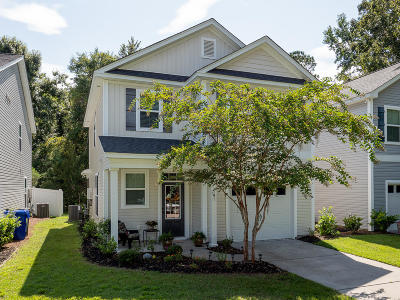 Charleston Single Family Home For Sale: 191 Dorothy Drive