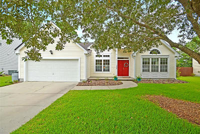 Mount Pleasant SC Single Family Home For Sale: $370,000