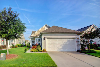 Summerville Single Family Home For Sale: 172 Sea Lavender Lane