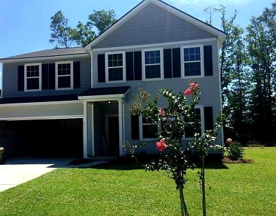 Charleston County Single Family Home For Sale: 3071 Conservancy Lane