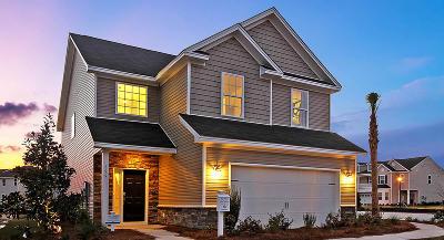 Summerville Single Family Home For Sale: 209 Firewheel Court