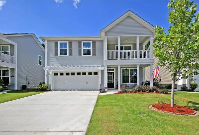 Summerville Single Family Home For Sale: 132 Glenspring Drive