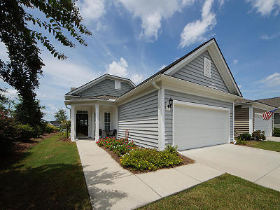 Summerville Single Family Home For Sale: 230 Waterfront Park Drive Drive