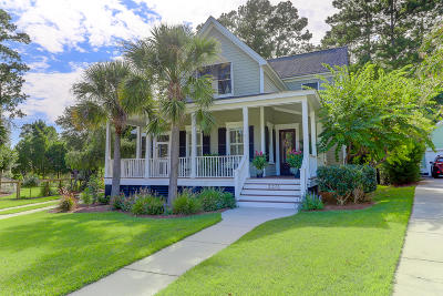 Johns Island Single Family Home Contingent: 3334 Porchview Place