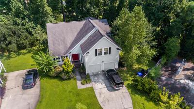 Johns Island Single Family Home For Sale: 2906 Zachary George Lane
