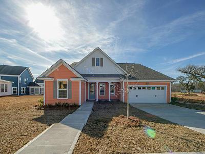 Moncks Corner Single Family Home For Sale: 567 Pendleton Drive