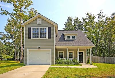 Single Family Home For Sale: 1575 Burnswick Drive
