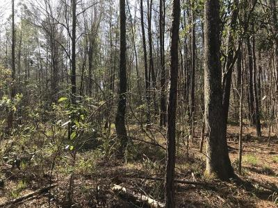 Huger SC Residential Lots & Land For Sale: $143,000