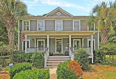 Mount Pleasant Single Family Home For Sale: 756 Preservation Place