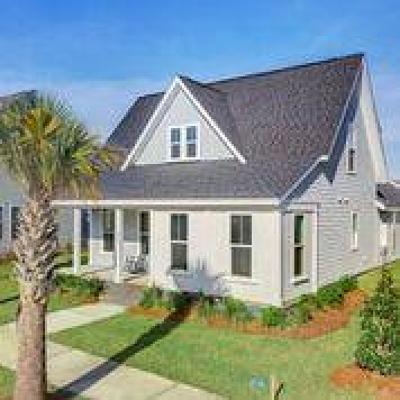 Summerville Single Family Home For Sale: 302 Watergrass Street