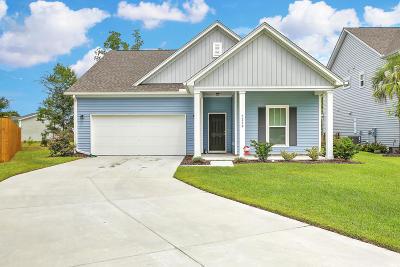Johns Island Single Family Home For Sale: 3218 Grants Passage Avenue