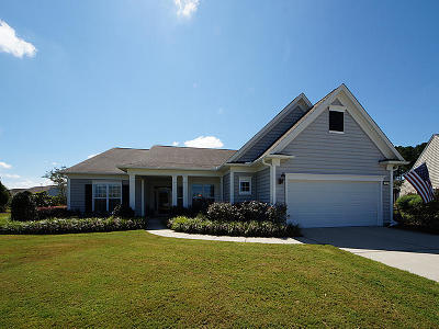 Summerville Single Family Home Contingent: 325 Waterlily Way