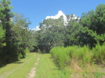 Edisto Island SC Residential Lots & Land For Sale: $69,500