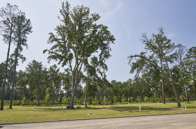 Charleston Residential Lots & Land For Sale: 321 Bayley Road