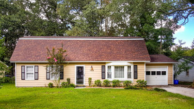 Charleston Single Family Home For Sale: 743 Corral Drive