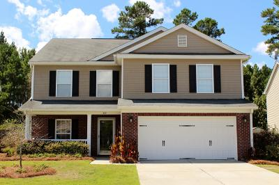 Summerville Single Family Home For Sale: 319 Deep River Road