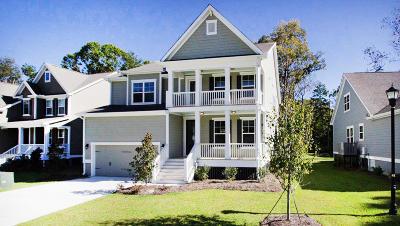 Single Family Home For Sale: 1460 Brockenfelt Drive